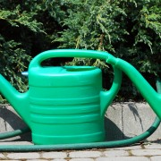 10 tips for watering like a green thumb