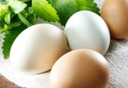 Food poisoning from eggs: the yummy meal that caused a yucky stomach