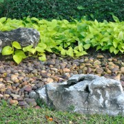 Designing a rock garden for hillsides