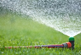 5 portable sprinkler system options for a lush, healthy lawn