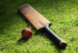 Quickly learn how to follow a cricket game