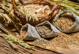 A guide to the five major grains