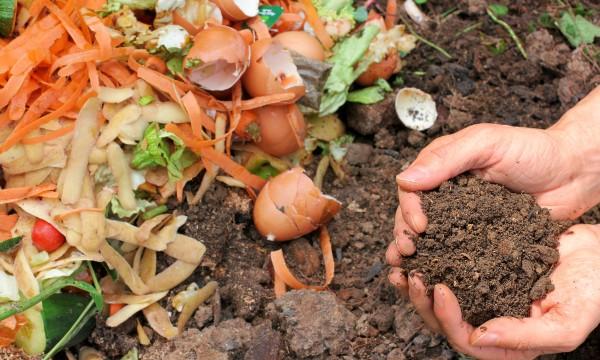 Tips to compost kitchen scraps