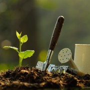 2 easy ways to plan and lay out your garden