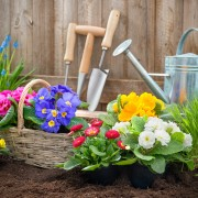 A quick list of garden hand tools