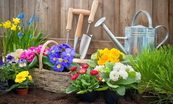 A quick list of garden hand tools
