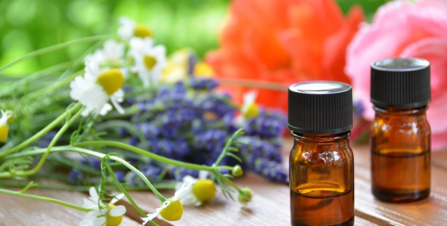 Treat and prevent bug bites with essential oils