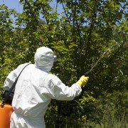 6 suggestions for using herbicides safely