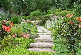 3 options for making garden paths with sand or mortar