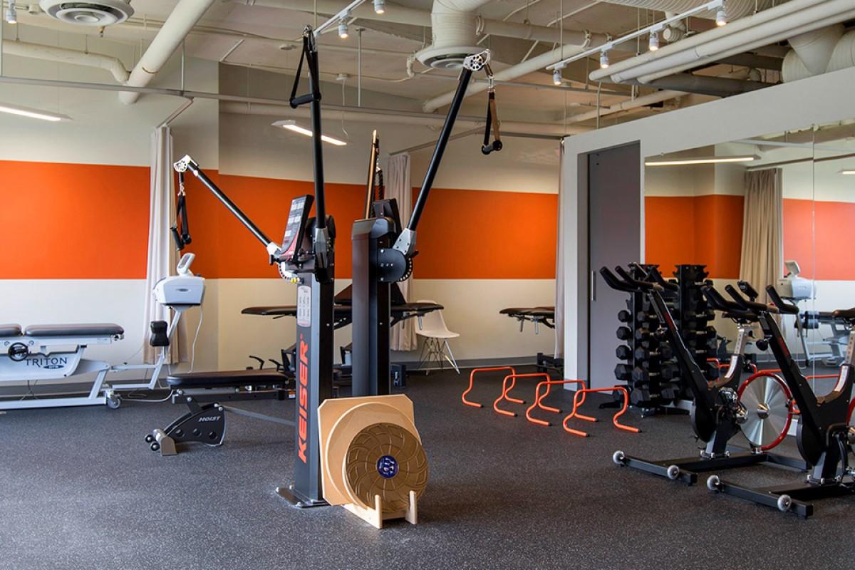 Myodetox Physio Room - Oak