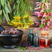 5 must-have herbs for every garden