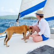6 safety tips for bringing your dog on the water