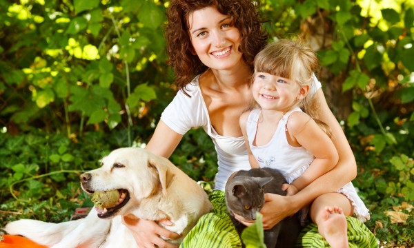 How to easily adopt a pet from a breeder