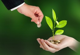 10 suggestions for ethical investing
