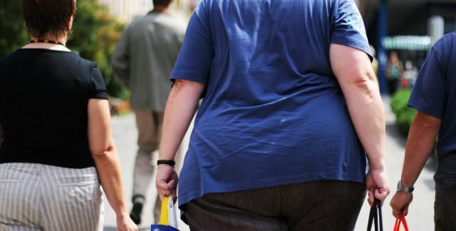 Making sense of obesity