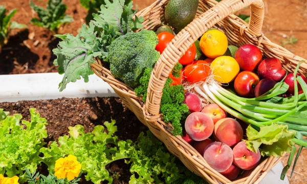When buying organic produce: 3 key questions to ask
