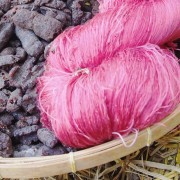 Creating custom wool dyes from plants