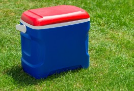 5 types of coolers to take camping