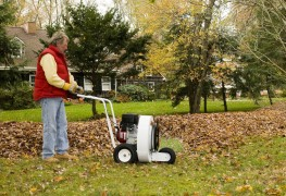 What you should know before buying a leaf blower