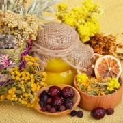 3 basic principles for properly identifying medicinal plants