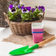 4 things you didn't know about container gardening