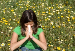 A few tips for combating year-round allergies