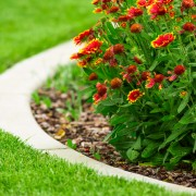 Tips for maintaining your lawn edge