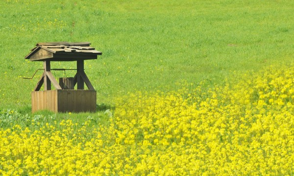 Tips for finding your rural home's water supply