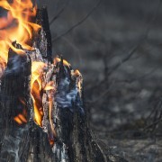 5 practices to defend your home from forest fires