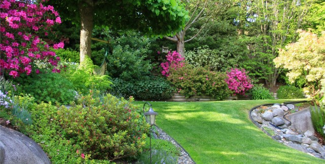 10 simple tips for creating a garden on a budget