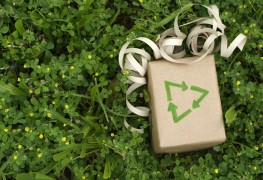 Eco-friendly, original and attractive ideas for gift wrap