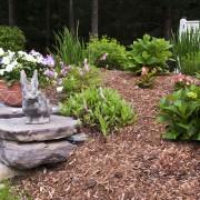 Gardener hints: choosing mulch for your garden
