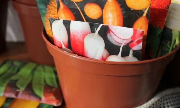 5 ideas for keeping organized garden records