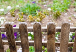 5 things to consider before building a garden fence