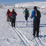How to buy cross-country ski equipment
