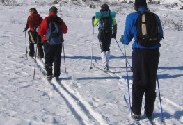 How to buy cross-country ski material