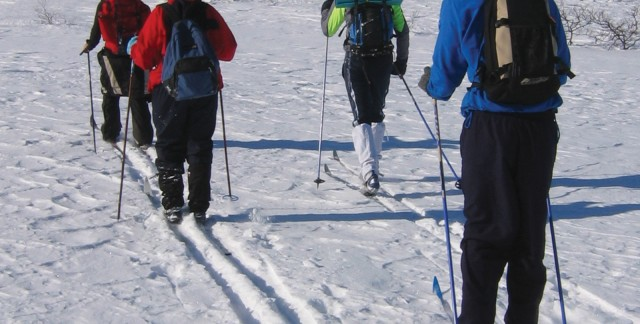 3 things to consider when choosing cross country ski poles | Smart ...