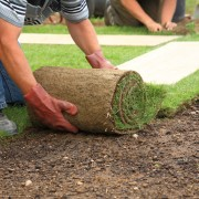Handy tips for creating and maintaining a lush lawn