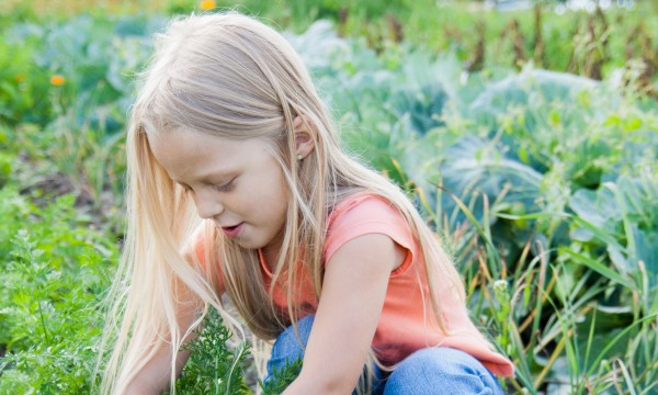 7 funs ways to get kids out in the garden