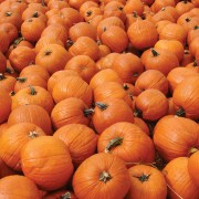 Eat healthier with help from pumpkins
