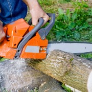 Basic Saws and Cutting Tools