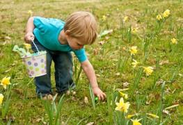 3 tips for planning the ultimate Easter egg hunt for kids