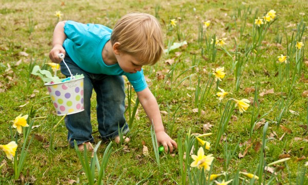 3 tips for planning the ultimate Easter egg hunt for kids