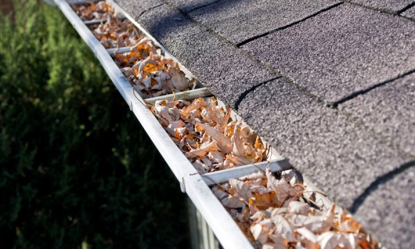 How to identify the signs your roof may need repair