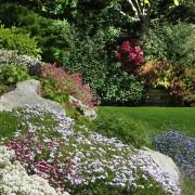 Creating and refreshing a rock garden