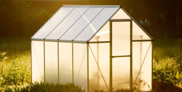 9 tips for planning and building a greenhouse