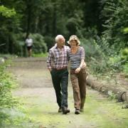 9 tips to encourage the walking habit