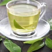 The healing powers of green tea