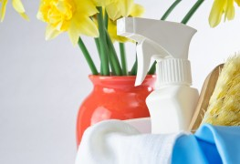 Are you spring cleaning savvy?
