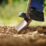 8 unusual ways to achieve a great garden